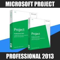 Microsoft Project Professional 2013